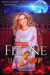 4.Feline the Burn - The Firehouse Feline book 5 v1