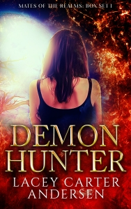 8.Demon Hunter Box Set (one series)