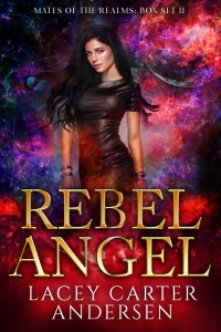 9.Rebel Angel Box Set (one series)